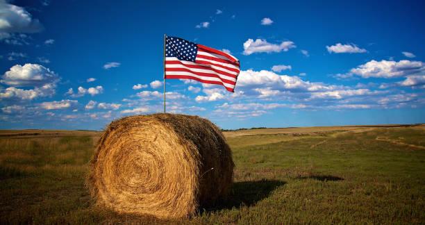 American flag in bale of hay in farm field stock photo