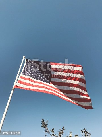 American Flag waving proudly in a clear blue sky with partial view of small tree branch. Digital enhancements applied in post production. Photograph taken on a midwestern hobby farm in Wisconsin.