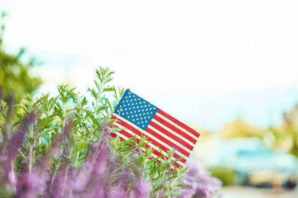 American flag in nature with copy space stock photo