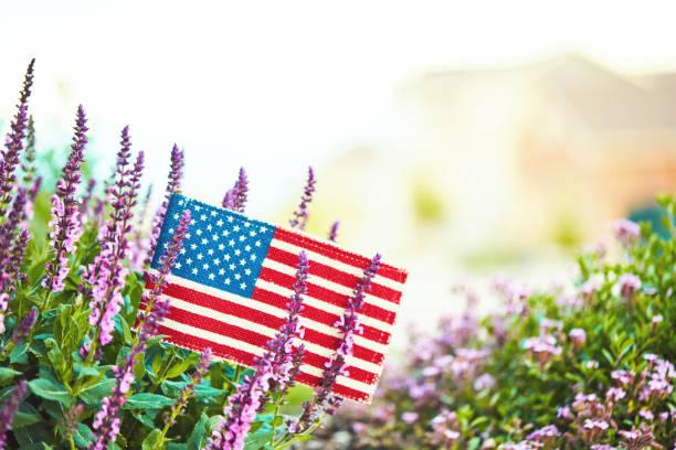 bandera americana en la naturaleza con espacio de copia - día del trabajo fotografías e imágenes de stock