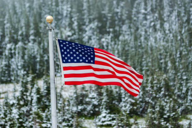 American Flag in Snow stock photo