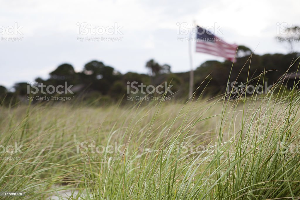 American flag in the high grass along beach royalty-free stock photo