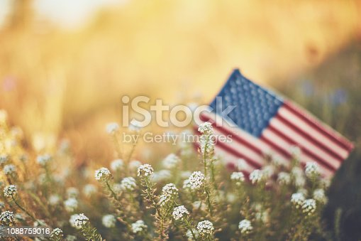 American flag in warm sunshine with wildflowers