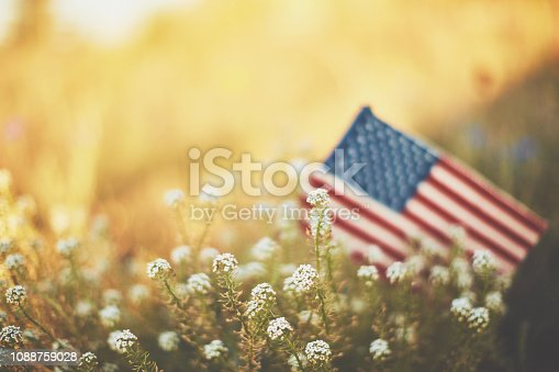 istock American flag in warm sunshine with wildflowers 1088759028