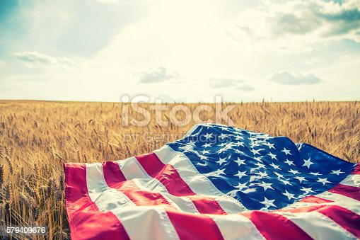 istock USA American flag lies on the golden wheat field. 579409676