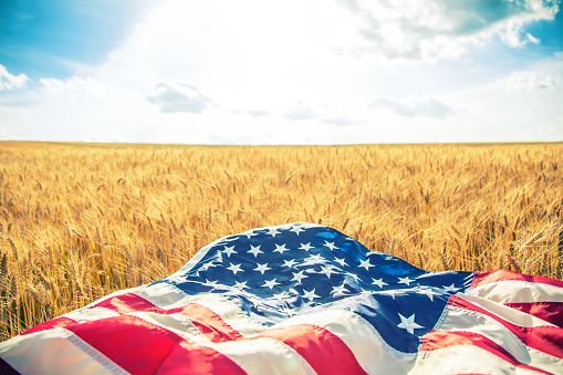 istock USA American flag lies on the golden wheat field. 579413096