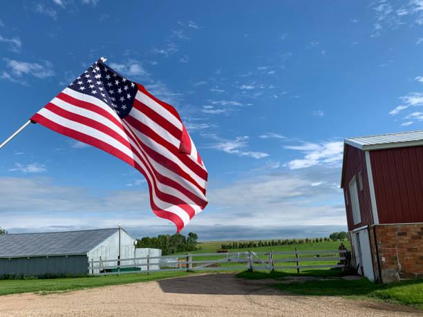 amerikanische flagge auf bauernhof - horizontal gestreiften vorhängen stock-fotos und bilder