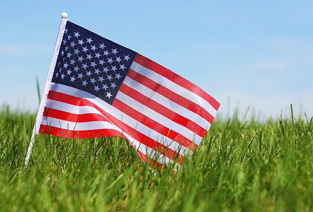 American Flag on Grass. 4th of July stock photo