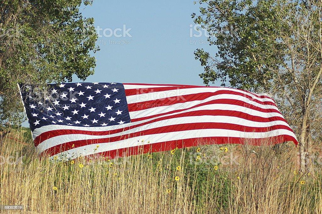 American Flag royalty-free stock photo