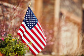 American flag surrounded by blossoms and flowers