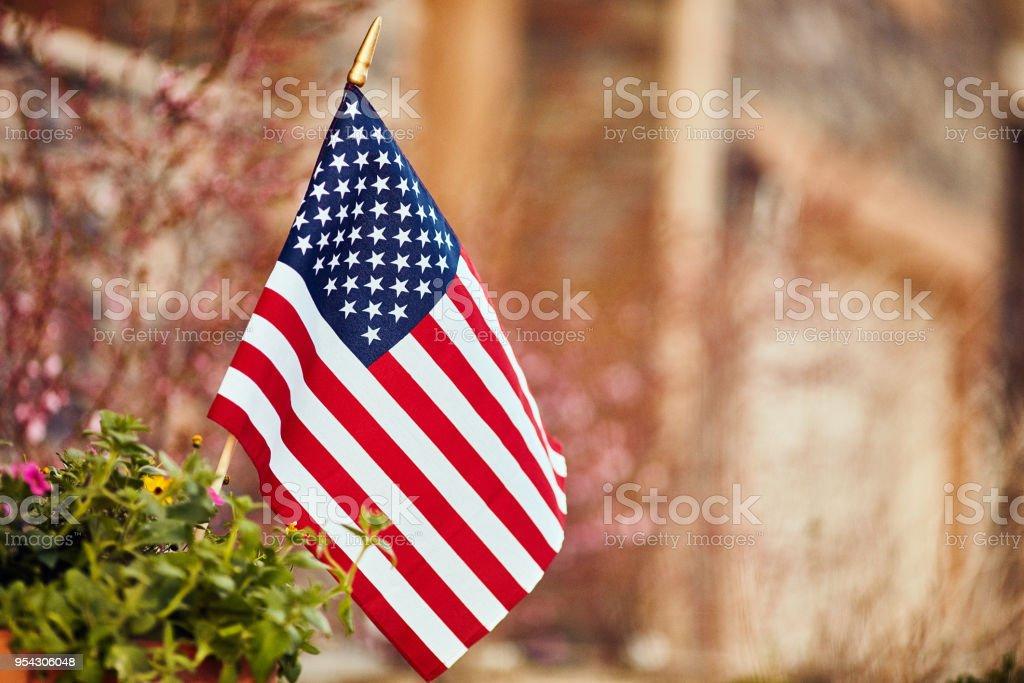 Amerikanische Flagge, umgeben von Blüten und Blumen – Foto