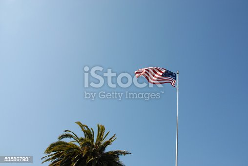 537898300istockphoto American Flag with Palm Trees. 535867931