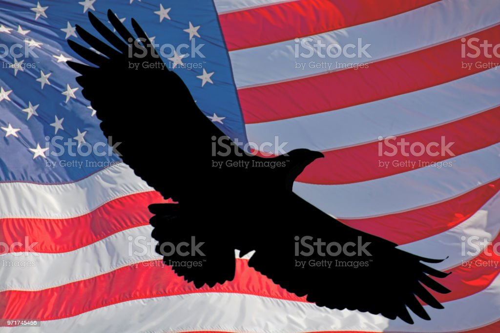 American Flag With Silhouette Of A Bald Eagle Stock Photo More