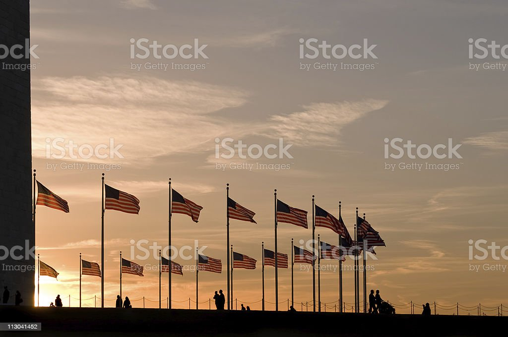 American flags around Washington Monument at sunset royalty-free stock photo