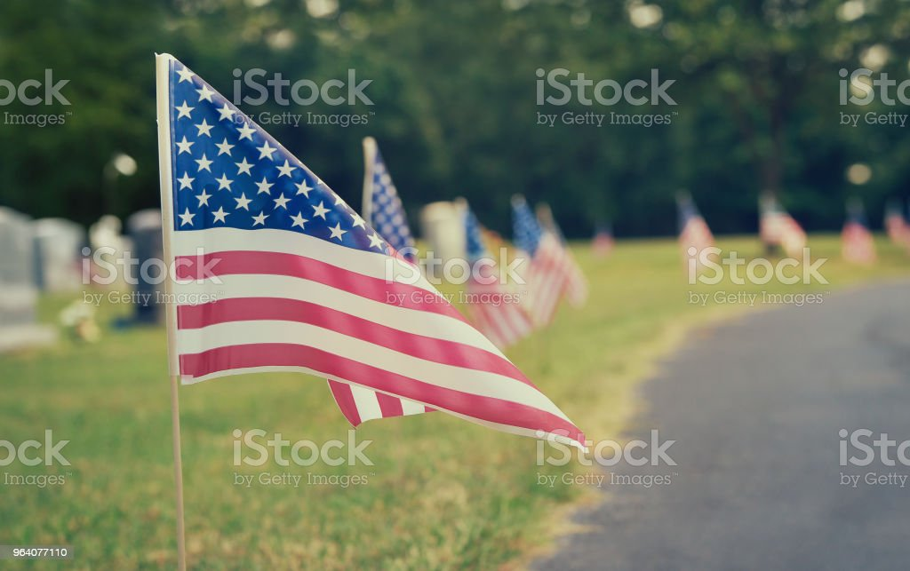 American flags at a cemetery on Memorial Day - Royalty-free American Flag Stock Photo