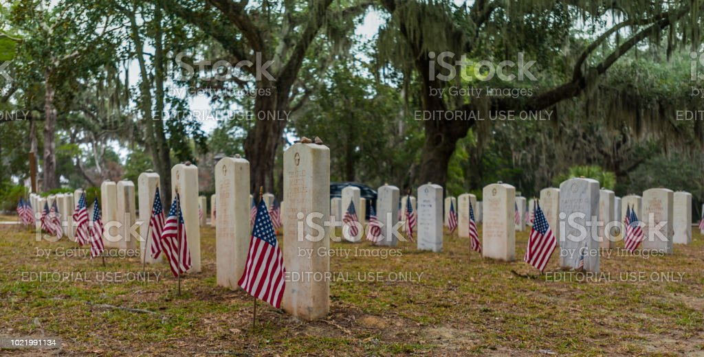 American Flags at Soldiers Graves Savannah, Georgia, United States: November 5, 20147: American Flags at Soldiers Graves in southern cemetery Agricultural Field Stock Photo