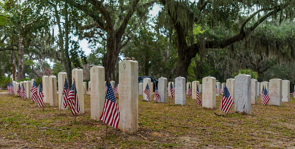 American Flags At Soldiers Graves Stock Photo - Download Image Now