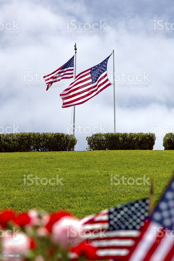 American Flags at National Military Cemetery