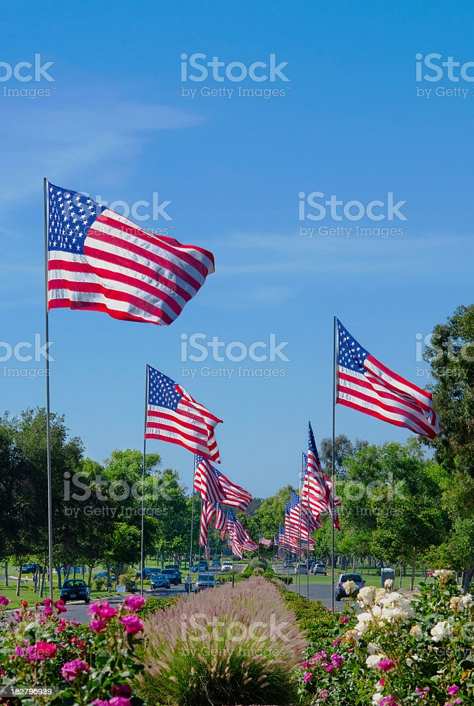 American Flags In A Row royalty-free stock photo