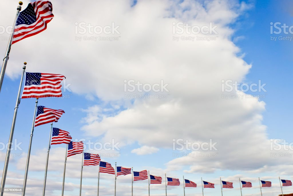 American Flags in a Row stock photo