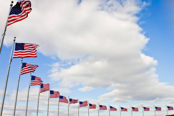 american flags in a row - national anthem stock photos and pictures