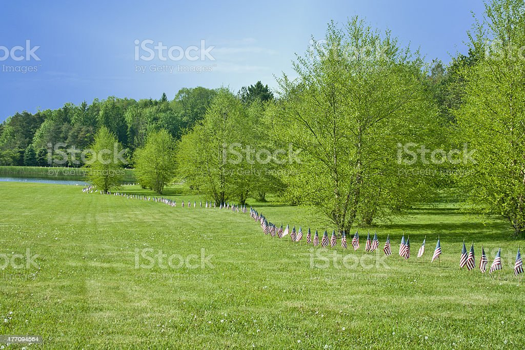 American Flags Line The Park On Memorial Day stock photo