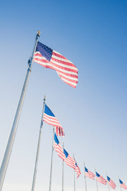 American flags on flagpoles stock photo