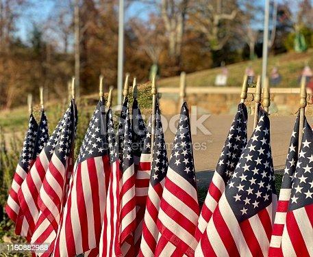 Flags plantea on ground