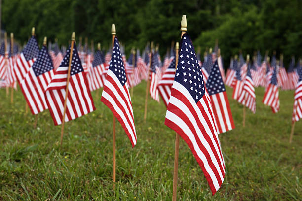 American flags. stock photo