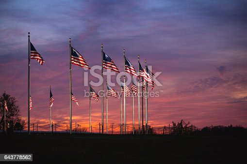 American flags at the Washington Monument during sunset (stock image)