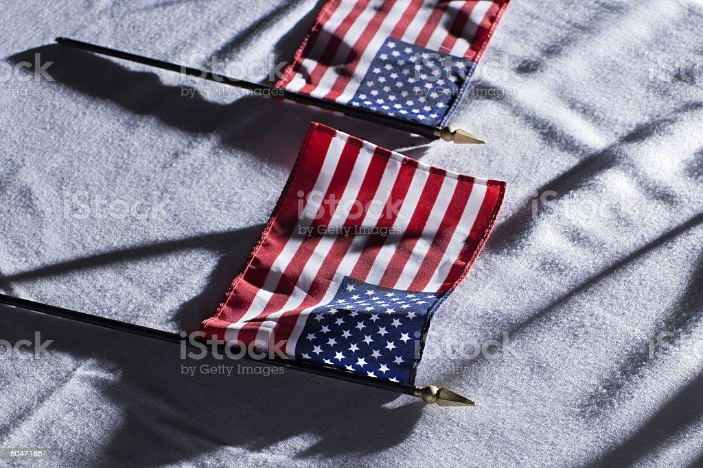 아메리칸 포석 royalty-free 스톡 사진