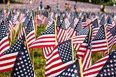 Lots of American flags in the Boston Common gardens, Boston, Massachusetts, USA