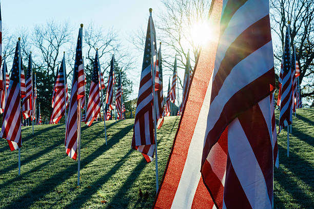 American flags with sun flare