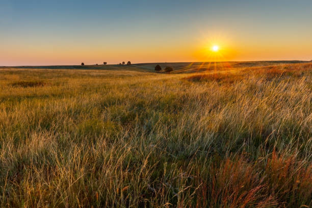 American Great Plains Prairie at Sunrise stock photo