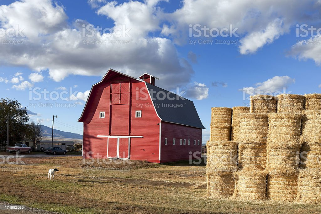 American Red Barn stock photo