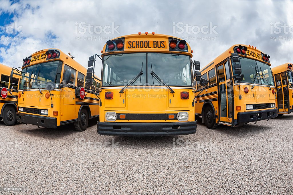 American School Buses stock photo
