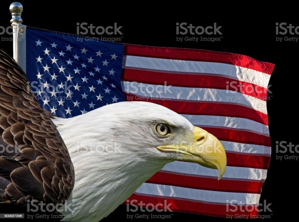 American Symbols stock photo