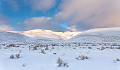 Rolling Snow Covered Hills in the American West. Lamar Valley, Yellowstone National Park, Wyoming