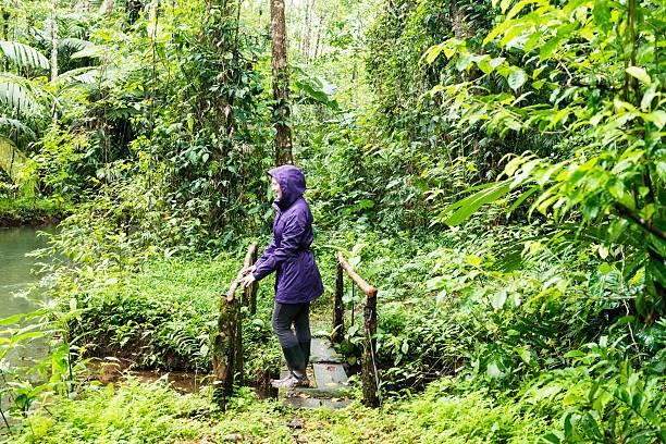american woman コスタリカの熱帯雨林にも自然にエコの旅 - 自然旅行 ストックフォトと画像
