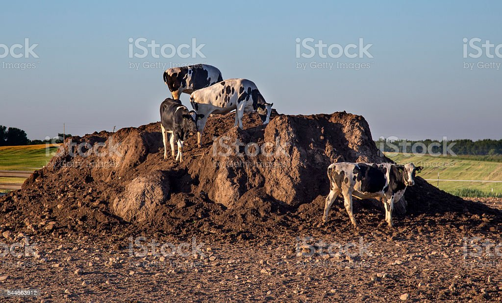 America's Dairyland with King of the Mountain stock photo