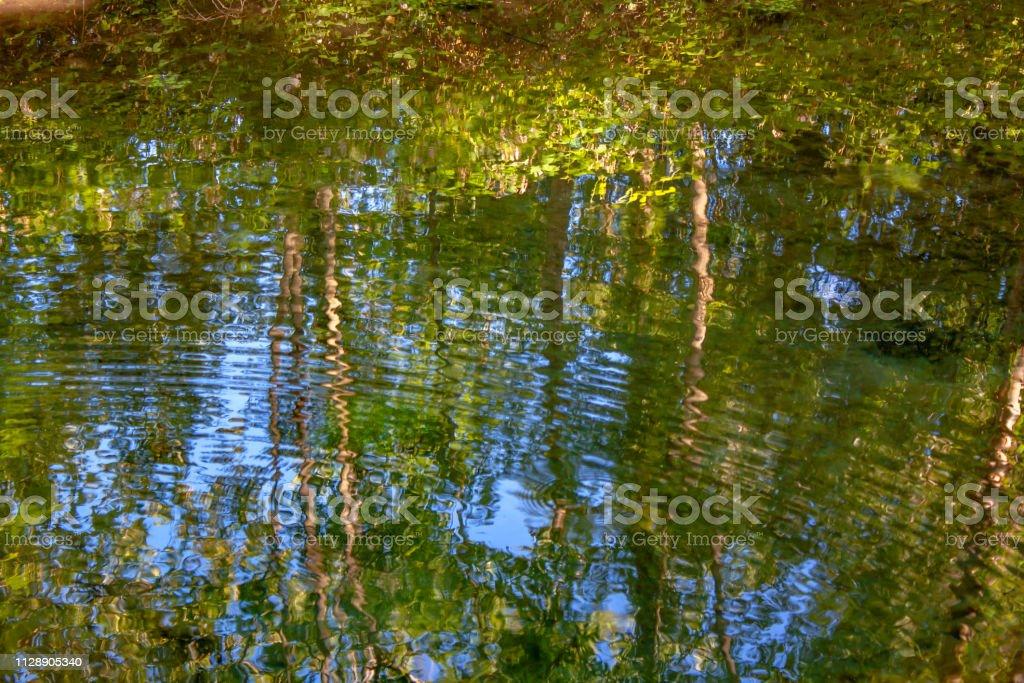 Amiens. Reflets dans l'eau. Picardie. Somme - Royalty-free Amiens Foto de stock