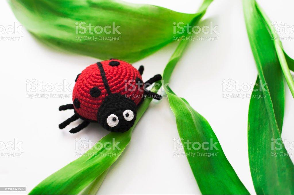 Ravelry: Amigurumi Stag Beetle pattern by Charlotte (flottelotte236) | 682x1024