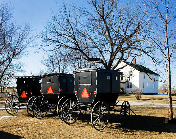 Amish Buggies At Rest stock photo