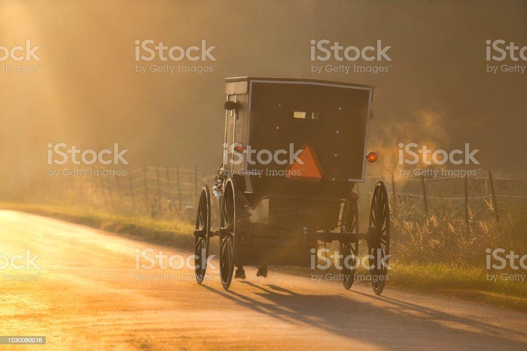 Amish Buggy and Sunbeam stock photo