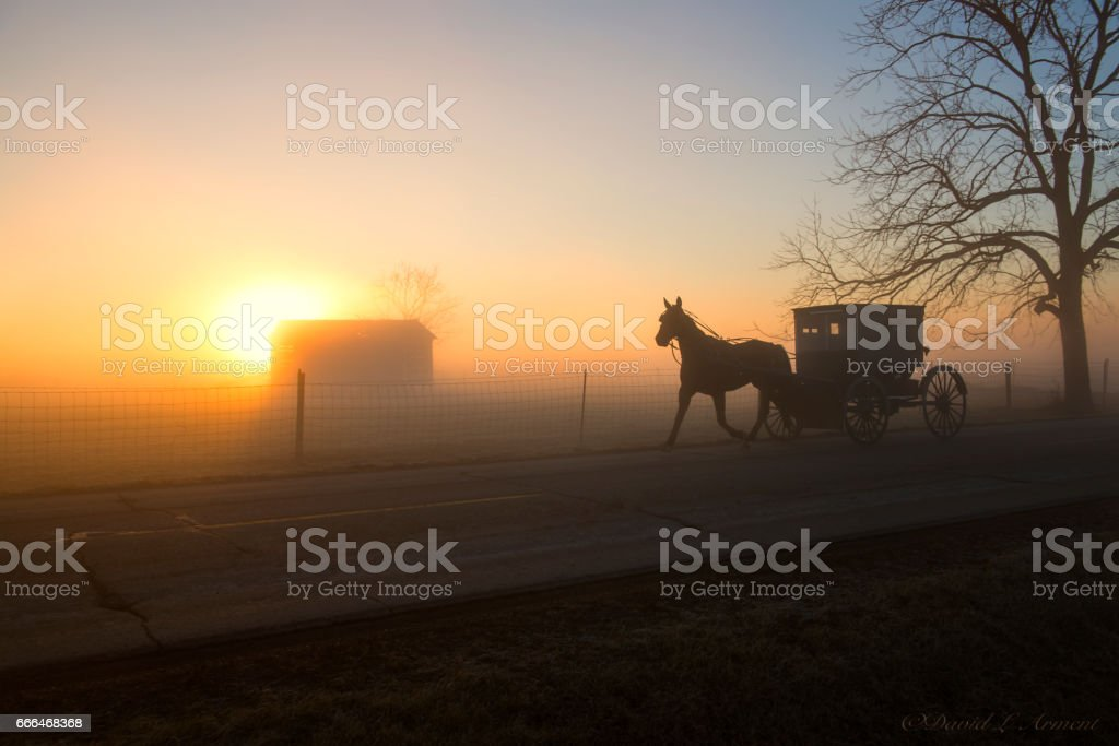 Amish Buggy Approaching at Dawn stock photo