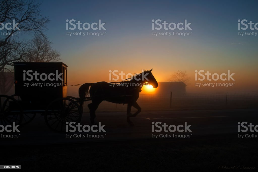 Amish Buggy at Dawn as Sun Shines at Horses Head stock photo