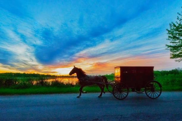 Amish buggy at dusk picture id1154436420?b=1&k=6&m=1154436420&s=612x612&w=0&h=dj08rwzucoeomippzq0nb5wqypwwcsdqcdr0cy1tot8=