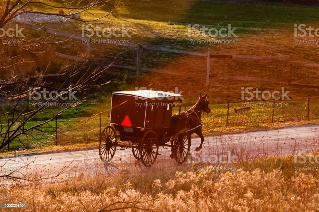 Amish Buggy from Above at Dusk stock photo