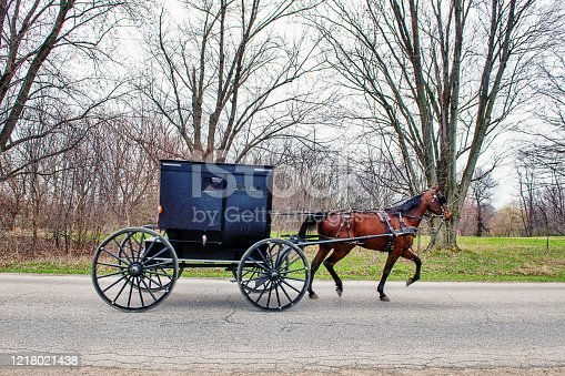 Amish Buggy on Rural Indiana Road in Early Spring
