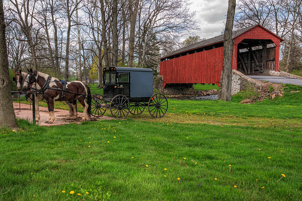 amish buggy parked by covered bridge - 載客馬車 個照片及圖片檔